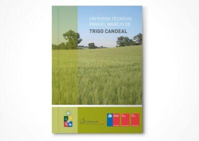 Criterios Técnicos para el manejo de Trigo candeal